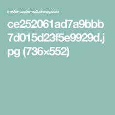 ce252061ad7a9bbb7d015d23f5e9929d.jpg (736×552)