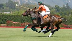 Estancia Villa Maria: Guests can watch the local polo club train at the renowned G. Morris Equestrian Centre.