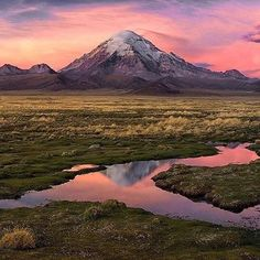 Sajama National Park, Bolivia.