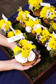 Navy Blue And Yellow Wedding | Just For Fun: Flower Pot Escort Cards! | Weddingbee PRO