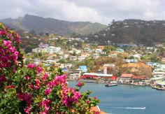 """""""Visual surprise is natural in the Caribbean; it comes with the landscape, and faced with its beauty, the sigh of History dissolves."""" — Dere..."""