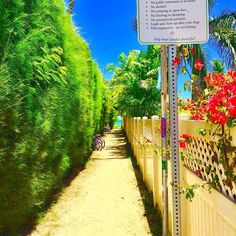【alleyoop106】さんのInstagramをピンしています。 《Entrance to Heaven...♡ #lovetheisland#ハワイ#hawaii#カイルア#kailua#カイルアビーチ#kailuabeach#ラニカイビーチ#lanikaibeach#pilbox#絶景#海#ビーチ#beach#island#aloha_life#life#lifeisbeautiful#アイランダー#ISLANDER#gotrip#island#dayoff#love#happy#instagood#hawaiistagram#followme》
