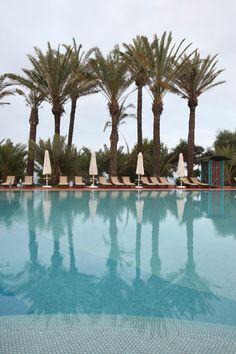 Palms at the Pool - Hotel SENTIDO Perissia, Side, Turkey