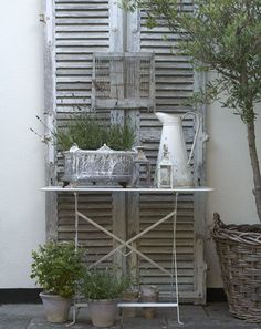 3 Old Shutters Rustic Gardens, White Gardens, Outdoor Gardens, Outdoor Spaces, Outdoor Living, Outdoor Decor, Louvre Doors, Old Shutters, Architectural Salvage