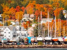 Beautiful Bayfield, Ontario, Canada. Grew up near there and that's where we went to the beach. (lz)