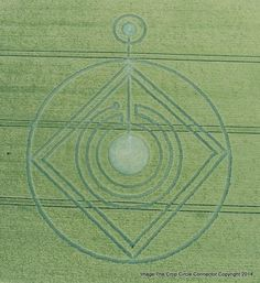 Crop Circle at Hod Hill, nr Hanford, Dorset, United Kingdom. Reported 1st June  2014