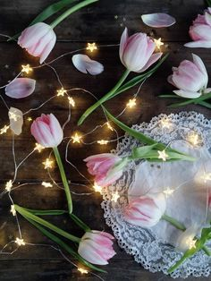 Photographing Fairy Lights : Makelight
