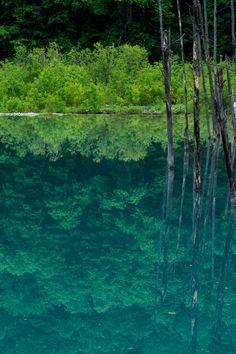 Biei, Hokkaido, Japan #緑 #Green #reflection