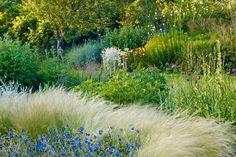 Bluebell Cottage & Nursery, Cheshire - English Gardens - Design & Landscaping Ideas (houseandgarden.co.uk)
