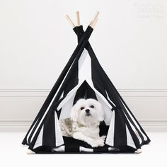 If someone forgot your Christmas gift, show them something cool😉! ・・・ Teepee available here: www.unitedpups.com/mp ・・・ #dogteepee #dogbed #doghouse