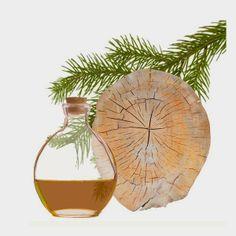 Olio essenziale di cedro