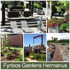 Fynbos Gardens Hermanus - Landscaping, Irrigation and Maintenance Address: 15 Mimosa Street, Industrial Area, Hermanus Tel: 028-313 1763  Email: fynbosgardens@hermanus.co.za