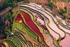 Yuanyang County, China - Bing images