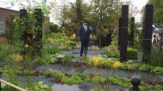 BBC Two - Seating in the garden - RHS Chelsea Flower Show, 2015 - The Great Chelsea Garden Challenge: The winning garden
