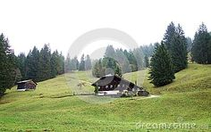 An rustic old typical challette purched on a hill top in the Swiss Alps with large overhanging roof and wood siding with a foggy high peak in the background. Wood Siding, Swiss Alps, Switzerland, Cabin, Rustic, Stock Photos, Top, Outdoor, Image