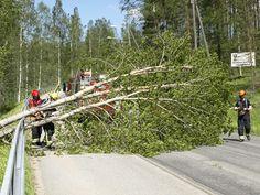 Tuuli on työllistänyt myös pelastuslaitosta. Puu kaatui Vaajakoskentielle iltapäivällä.