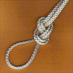 Top 10 Most Useful Rope Knots. Figure Eight Loop. Knots & Knotting Blog.