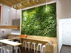 GSky Spruces up Organic Avenue's New Flagship Store with a Verdant Living Wall | Inhabitat - Sustainable Design Innovation, Eco Architecture, Green Building