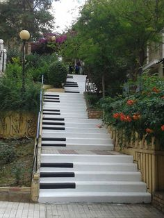 Newly decorated steps next to the music school in Pangrati, Athens! CYA is located in the same neighborhood, and many students will see these on their daily walk to school. Just a fun little piece of urban living in Athens!