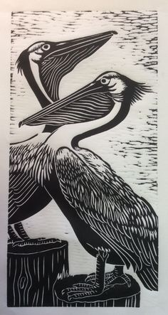 Pelican - hand-pulled relief print - Dona Reed, U.S.A.