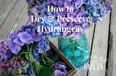 How To Dry & Preserve Hydrangeas - Little House on the Valley