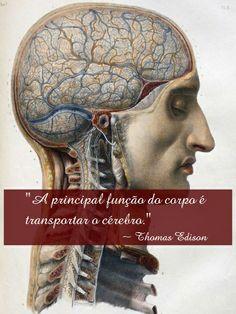 """""""A principal função do corpo é transportar o cérebro."""" Thomas Edison"""