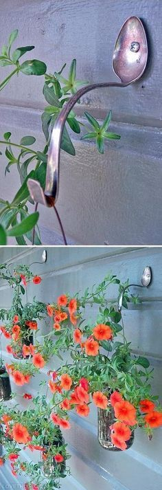 old bent tea spoon garden art as plant hanger; perfect for cottage style home decor;  Upcycle, Recycle, Salvage, diy, thrift, flea, repurpose!  For vintage ideas and goods shop at Estate ReSale & ReDesign, Bonita Springs, FL