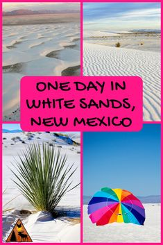 Looking to spend a day in White Sands National Monument? Check out our tips for making the most of your visit to the famed white sands.      #whitesands #newmexico #whitesandsnationalmonument #findyourpark #nationalparkobsessed #nationalparkgeek via @nationalparkobsessed