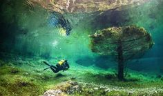Grüner See (Green Lake) is a lake in Styria, Austria known for its shimmering, emerald-green hue and its fluctuating depth throughout the ye...