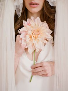 Top 20 Unique Wedding Bouquets with Single Flower Ideas | The ...