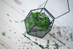 our wedding rings inside the forest casket :)  #wedding #weddingrings #casket #jewellery #jewelry #rings #forest #moss