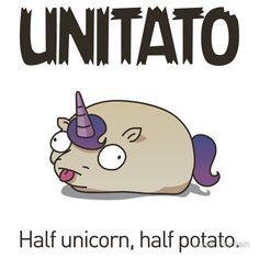 47 Best Unitato Images Unicorns Unicorn Rainbow Unicorn
