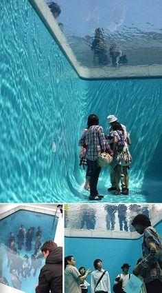 zwembad-2-leaondr-erlich