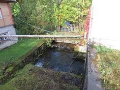 Sügis Eestis by Veeseire Garden Bridge, Outdoor Structures, Twitter