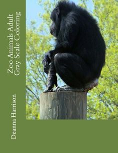 Zoo Animals Adult Gray Scale Coloring by Deanna L Harrison https://www.amazon.com/dp/1537383604/ref=cm_sw_r_pi_dp_x_tzB9xbVC6H8VH