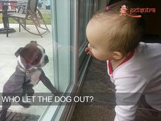 PetSutra - Puppies and Babies - Who let the dog out