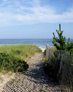 amagansett beach.