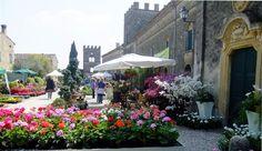 Borgo in fiore - Castellaro lagusello