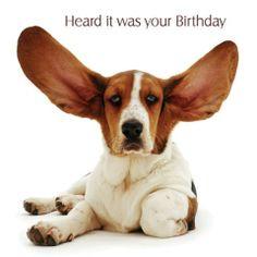 Kartka urodzinowa Big Ears