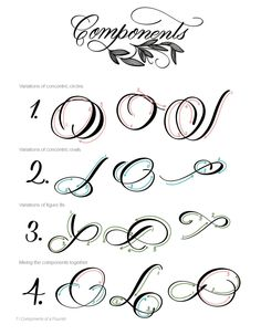 Flourishing: Incorporating Modern Flourishes into Your Lettering - Guide and Workbook How To Do Calligraphy, Calligraphy Fonts Alphabet, Flourish Calligraphy, Calligraphy For Beginners, Calligraphy Tutorial, Copperplate Calligraphy, Hand Lettering Tutorial, Modern Calligraphy, Graffiti Lettering Fonts