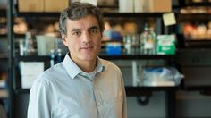 Jorge Palop Appointed to Assistant Investigator   Gladstone Institutes – Science Overcoming Disease