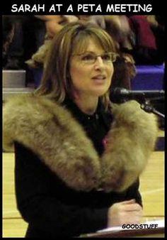 Hahaha love Sarah Palin
