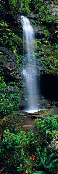 Valley of the Waters - Blue Mountains NP, New South Wales by Peter Lik