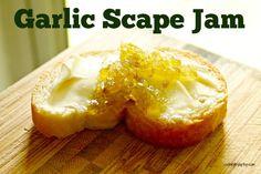 Rebecca Coleman shares a recipe for Garlic Scape Jam, plus gives away a Bernardin Home Canning Kit. Jelly Recipes, Jam Recipes, Canning Recipes, Greek Recipes, Recipies, Garlic Jelly Recipe, Preserving Garlic, Scape Recipe, Delish Videos