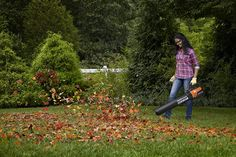 Worx Turbine Fusion Leaf Blower, Mulcher, and Vacuum with Dual-Stage Metal Impeller and Turbine Fan Technology – WG510 Garden Power Tools, Blue Eyed Men, Blueberry Bushes, Men Tips, Hipster Man, Men Photography, Leaf Blower, Perfect Man, Lawn And Garden