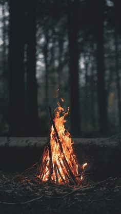 Would love to try a more complete camping photo, tent in the background, people around the fire. But with focus on the fire like this. Camping Photography, Art Photography, Forest Photography, Photography Backdrops, Photography Lighting, Aesthetic Photography Nature, Adventure Photography, Newborn Photography, Mysterious Photography