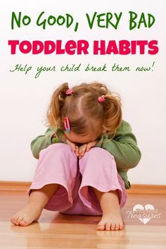 Do you think your toddler has some no good, very bad habits? It took some older parents to show me the truth. Stop the habits now!