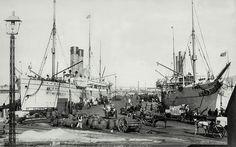 Cape Town docks c 1900