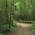 Respectons notre Mère Nature, changeons nos habitudes ! Restez dans les sentiers de randonnée...
