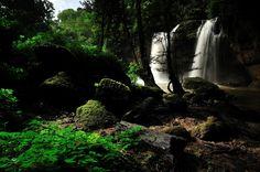 World Heritage - Location : Khao - Yai National Park, Thailand